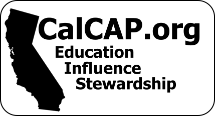 California Council on Alcohol Problems News and Education